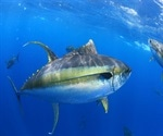 Could a tuna-derived protein inhibit SARS-CoV-2?