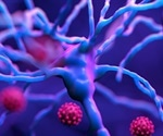Study observes neurological and psychiatric outcomes in recovered COVID-19 patients six months post-infection
