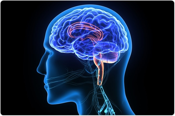 Image Credit: Life science / Shutterstock