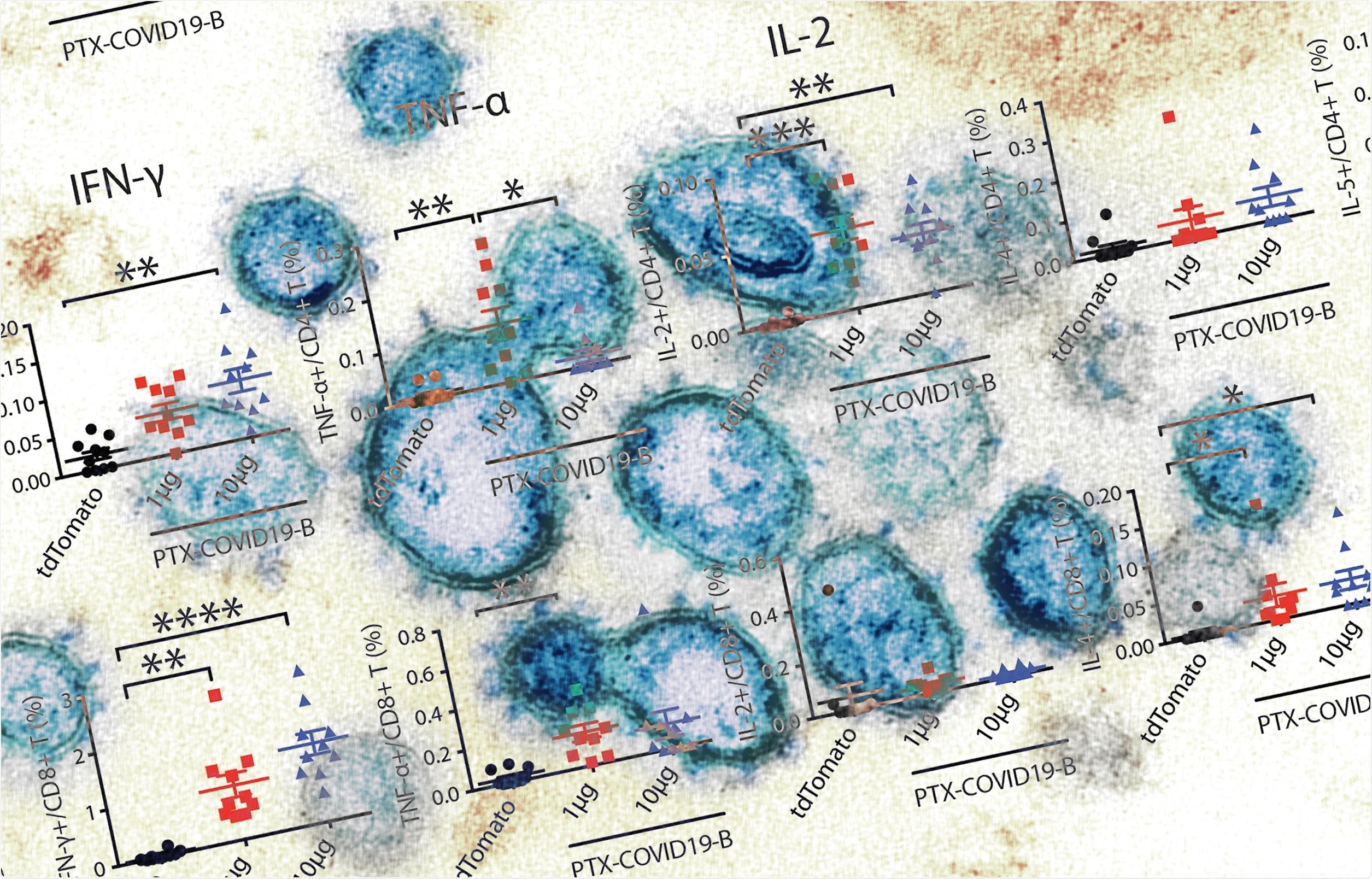 Study: Preclinical evaluation of a SARS-CoV-2 mRNA vaccine PTX-COVID19-B