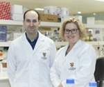 UNSW researchers find novel way to attack the 'fortress' surrounding pancreatic tumors