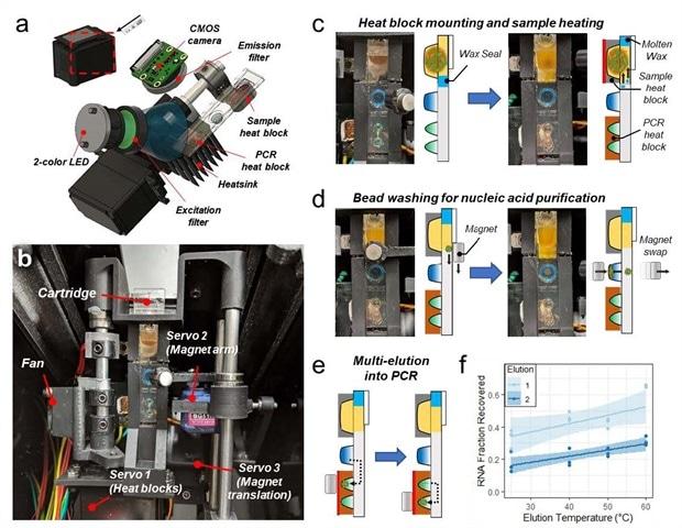 A magnetofluidic platform for SARS-CoV-2 variant and respiratory pathogen detection