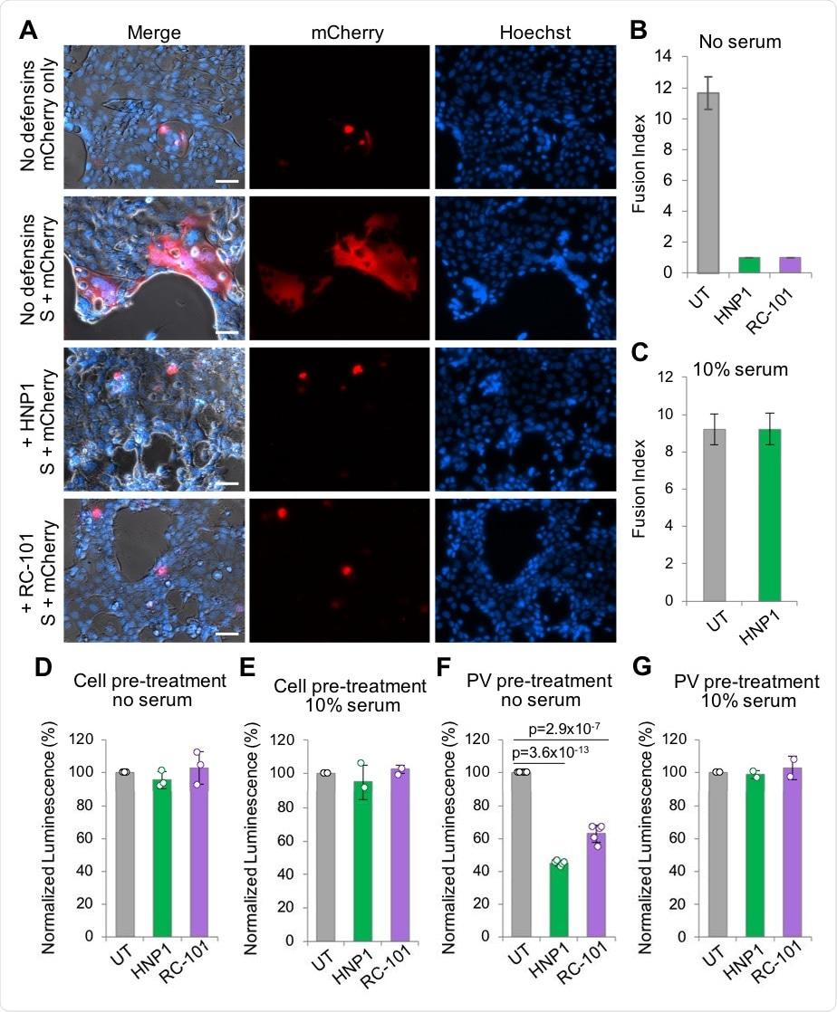 HNP1 y RC101 inhiben la infección viral con pseudotipado de SARS-CoV-2