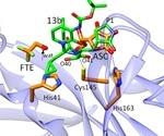Study reports vitamin C inhibits SARS-CoV-2 virus main protease