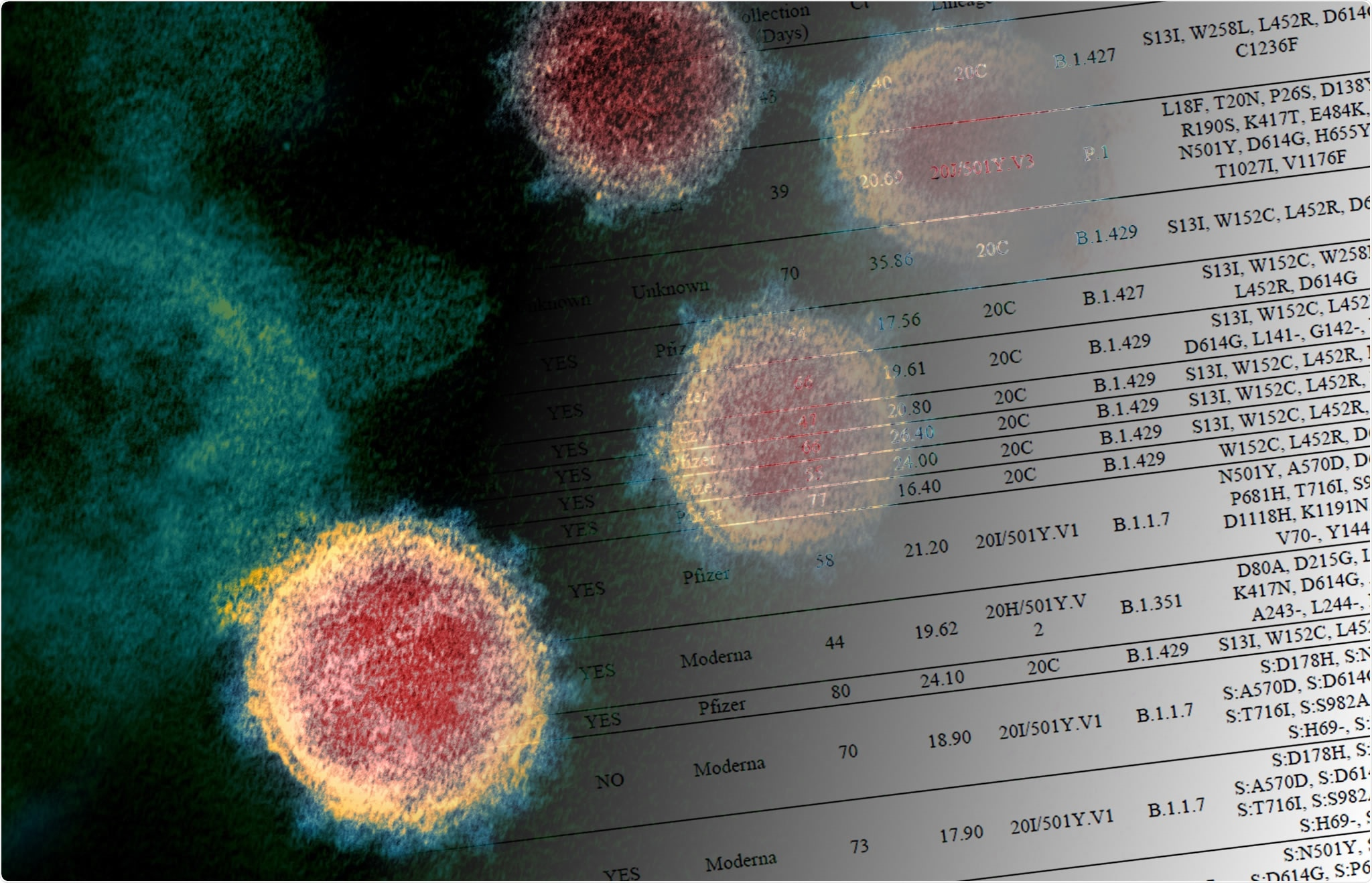 Study: Variants of concern are overrepresented among post-vaccination breakthrough infections of SARS-CoV-2 in Washington State. Image Credit NIAID