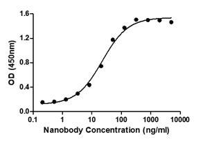 Binding ability measured in a functional ELISA. Anti-2019-nCoV Spike Protein Neutralizing Nanobody (C19S1-652L) binds to 2019-nCoV Spike protein RBD (C19SD-G241H).