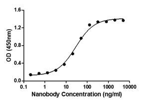 Binding ability measured in a functional ELISA. Anti-2019-nCoV Spike Protein Neutralizing Nanobody (C19S1-654L) binds 2019-nCoV Spike protein RBD (C19SD-G241H).