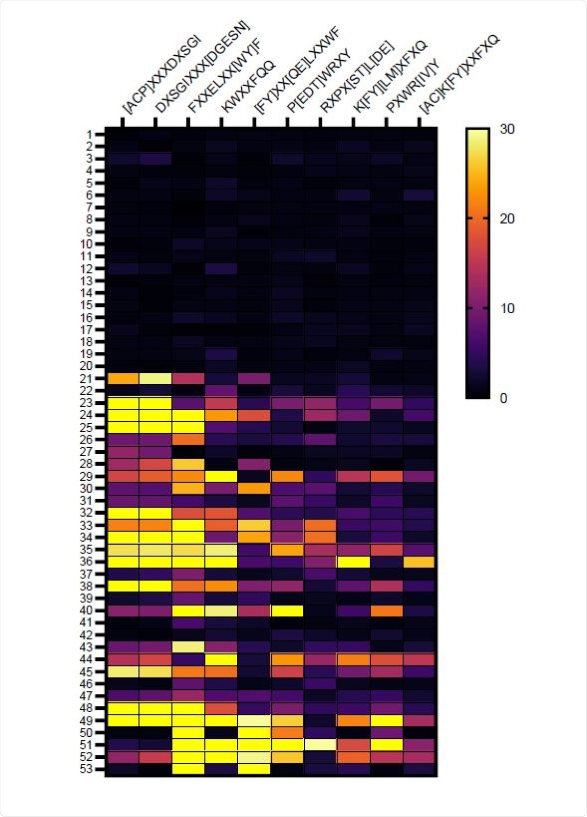 Heat map identifying amino acid motifs preferentially recognized by IgG from vaccinated subjects. Amino acid motifs were identified among the peptides immunoprecipitated by IgG from vaccine recipients using IMUNE algorithm and the level of enrichment (fold increase) in serum of individual subjects relative to pre-pandemic control subjects is depicted in the heat map. Samples 1-20 are pre-vaccine and samples 21-40 are the same subjects after Pfizer-BioNTech COVID-19 mRNA vaccination. Subjects 41-48 are from subjects that received Moderna vaccine. Samples 49-53 are vaccinated subjects that previously had COVID-19.