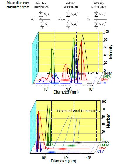 利用动态光散射(DLS)分析病毒粒子