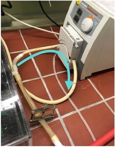 连接泵与药物®管道。还显示了流量或泵的方向运行缓冲。