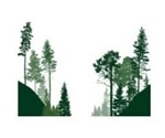 Seeing the forest for the trees: CMC and Regulatory Affairs