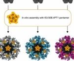Stabilizing mutations in SARS-CoV-2 immunogens improve vaccine design