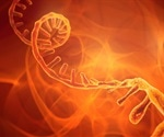 What is SiRNA?