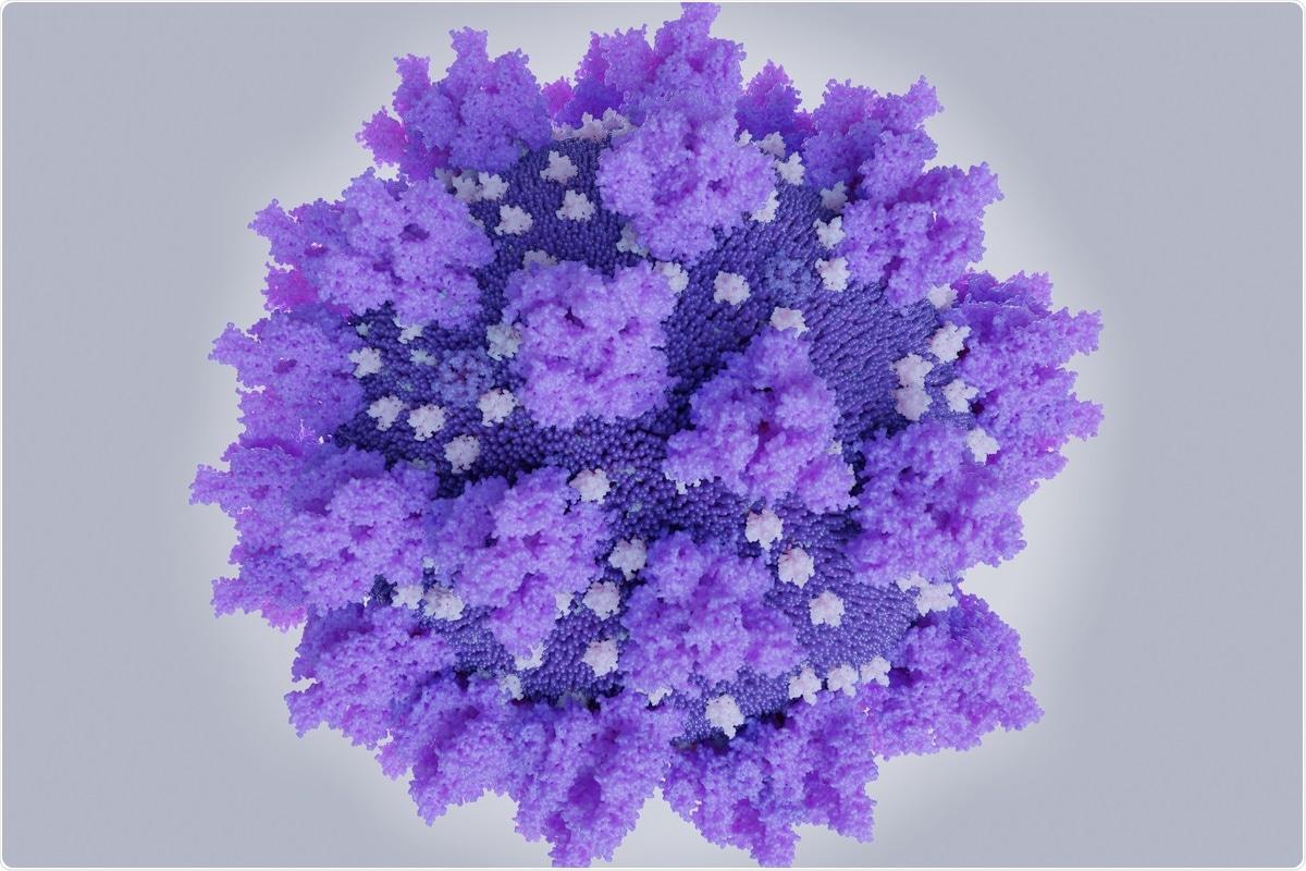 Study: Nucleocapsid vaccine elicits spike-independent SARS-CoV-2 protective immunity. Image Credit: Juan Gaertner / Shutterstock