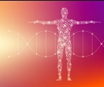 What Chemical Elements are Found in the Human Body?