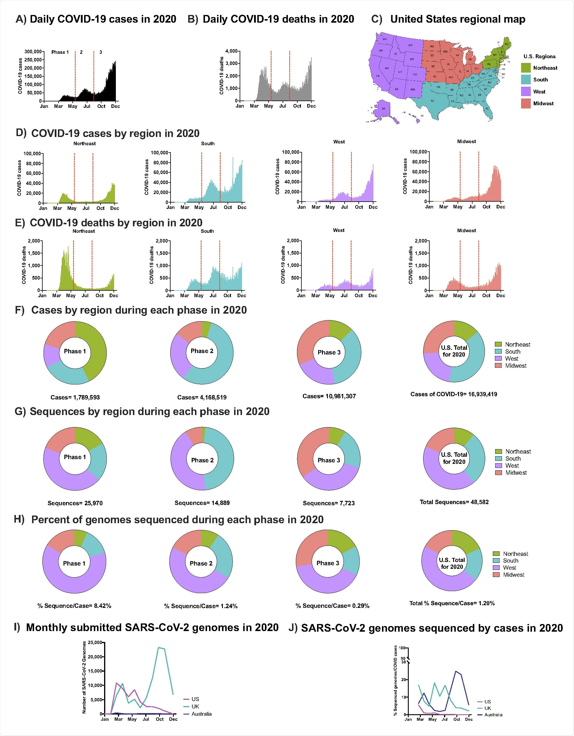 SARS-CoV-2 Epidemic in the U.S. in 2020 (A) Daily COVID-19 cases in the U.S. in 2020 (B) Daily COVID-19 deaths in the U.S. in 2020 (C) U.S. regional map colored by region (D) Number of COVID-19 cases in the U.S. in 2020 by region: Northeast, South, West, Midwest, respectively. (E) Number of COVID-19 deaths in the U.S. in 2020 by region. (A-B & D-E) Separation of Phases is denoted by vertical dotted red lines. Data were smoothed by a moving 3-day average. (F) Proportion of COVID-19 cases by region during each phase and the overall contribution to the U.S. total in 2020. (G) Proportion of SARS-CoV-2 sequences accessed (submission as of December 15th, 2020) by region during each phase and the overall contribution to the U.S. total in 2020 (H) The number of sequneces per case were obtained by each region during each phase and the U.S. total in 2020. (F-H) Highlights Phase 1, 2, and 3, followed with U.S. total of 2020. (I) Total number of sequences submitted to GISAID from the U.K., Australia, and the U.S. by December 15th, 2020. (J) Submitted SARS-CoV-2 genomes normalized to the number of COVID-19 cases from the U.K., Australia, and the U.S.