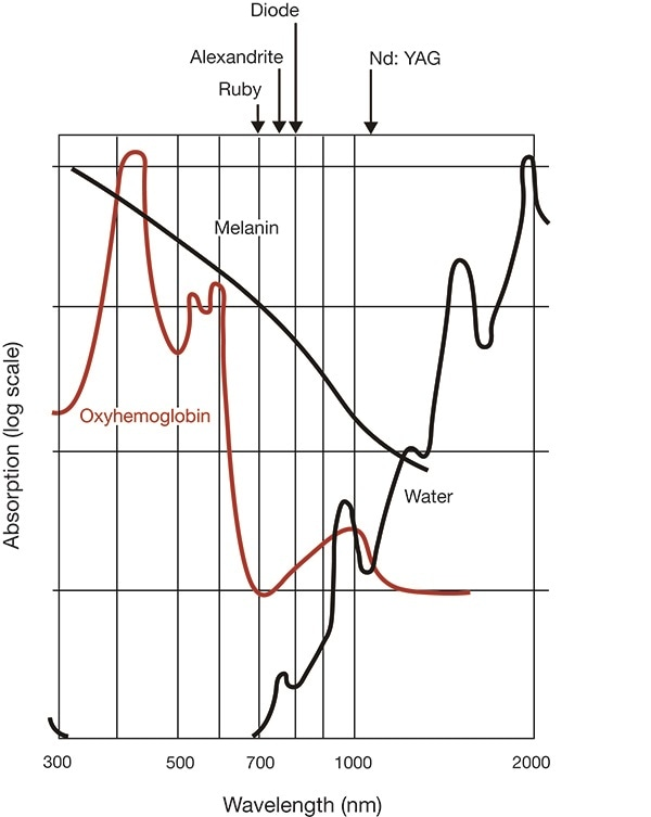 Relative absorption (logarithmic scale) of light by skin chromatophores (top). Depth of penetration of light radiation according to its wavelength (bottom).