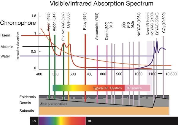 Different types of light sources show different emission wavelengths.