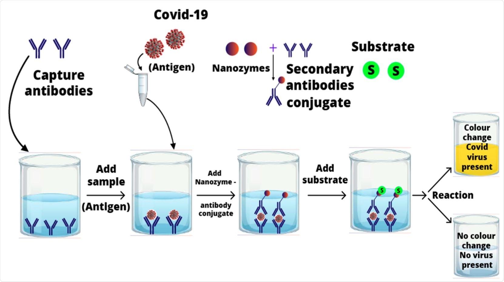 El mecanismo posible del bocadillo nanozyme-mediado enzima-conectó el análisis del inmunosorbente (ELISA) para la detección SARS-CoV-2.