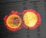 Antibody combination REGEN-COV prevents symptomatic disease following SARS-CoV-2 infection