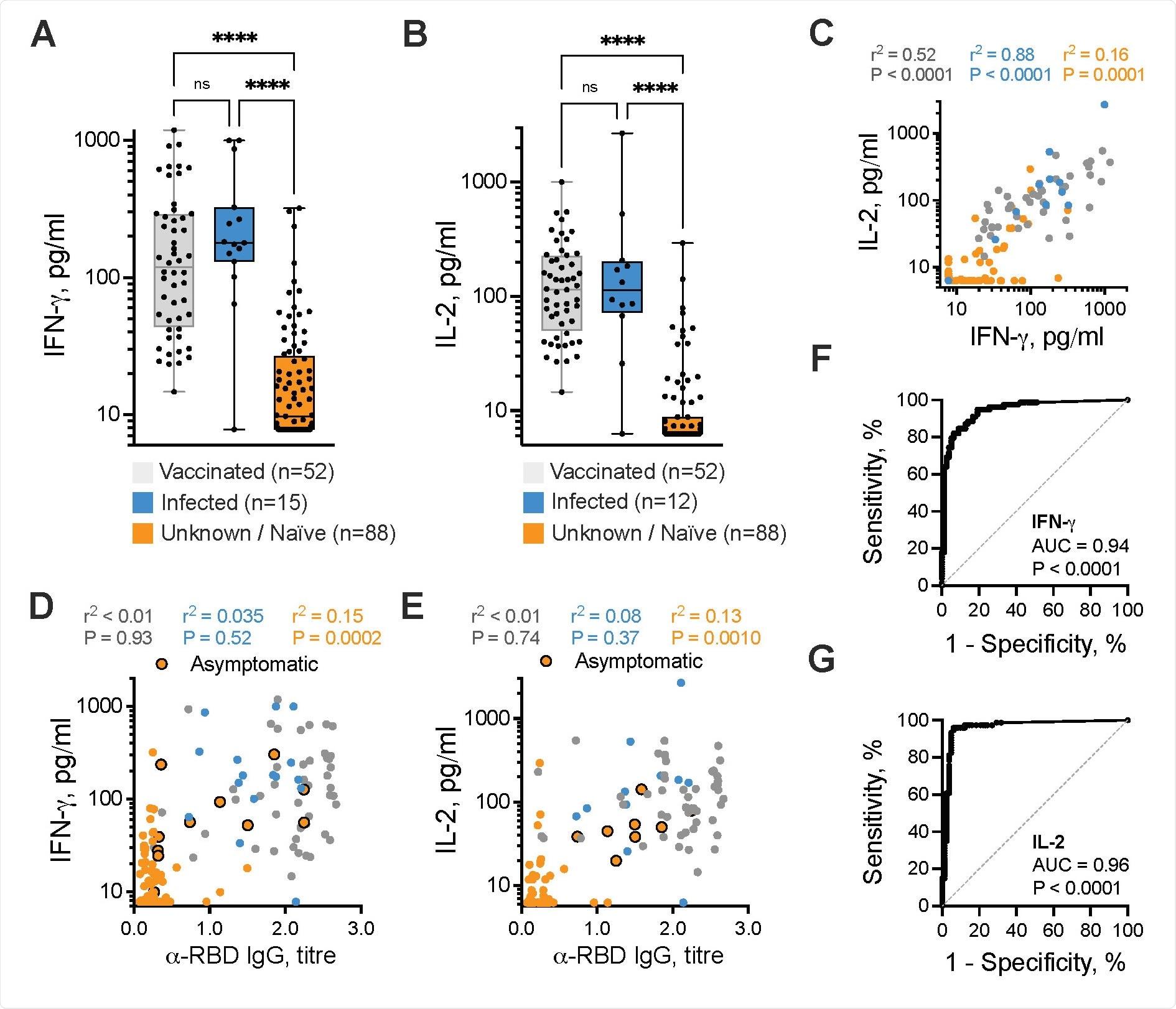 La reacción del linfocito T de SARS-CoV-2-specific determina la infección asintomática anterior. IFN-g (a) y la baja de IL-2 (b) en respuesta al centro común del péptido de SARS-CoV-2 S-/NP-/Mcombined fueron medidos en 156 participantes evaluable, subdivididos en ésos con la vacunación anterior COVID-19 (gris, n = 52), el resultado de la prueba anterior de la polimerización en cadena de COVID-19-positive (azul, n = 12-15), o ésos sin la prueba anterior del positivo COVID-19, llamada desconocido del `/naïve