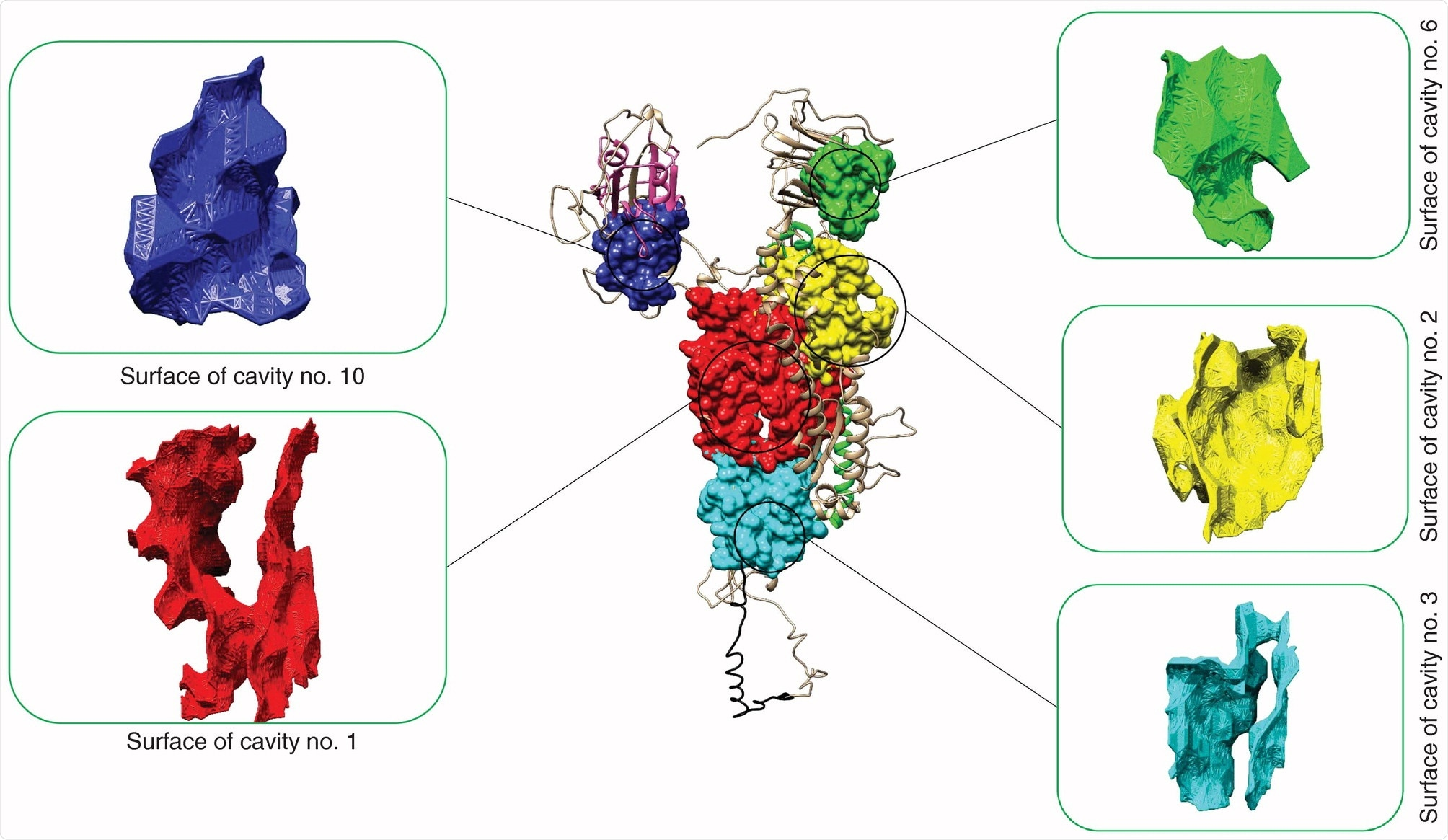 Pockets of SARS-CoV-2 spike protein