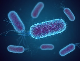 How bacterial cells have been engineered to produce virus-resistant synthetic polymers