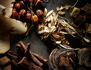 Researchers screen Chinese herbal medicines and plant compounds for anti-SARS-CoV-2 activity