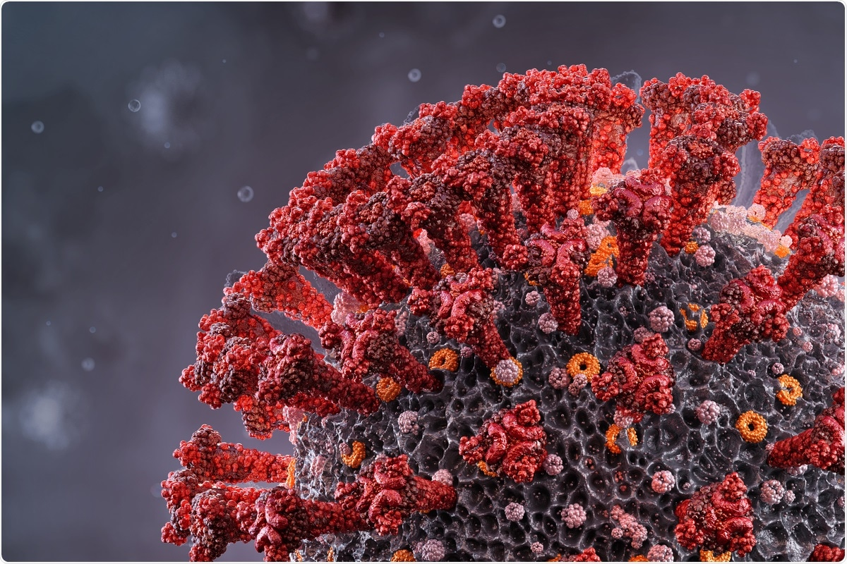 Study: A stem-loop RNA RIG-I agonist confers prophylactic and therapeutic protection against acute and chronic SARS-CoV-2 infection in mice. Image Credit: Corona Borealis Studio / Shutterstock
