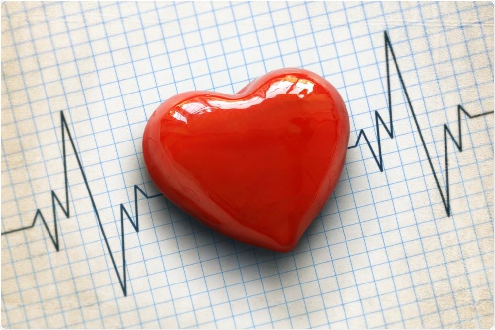 Conceito cardiovascular da saúde