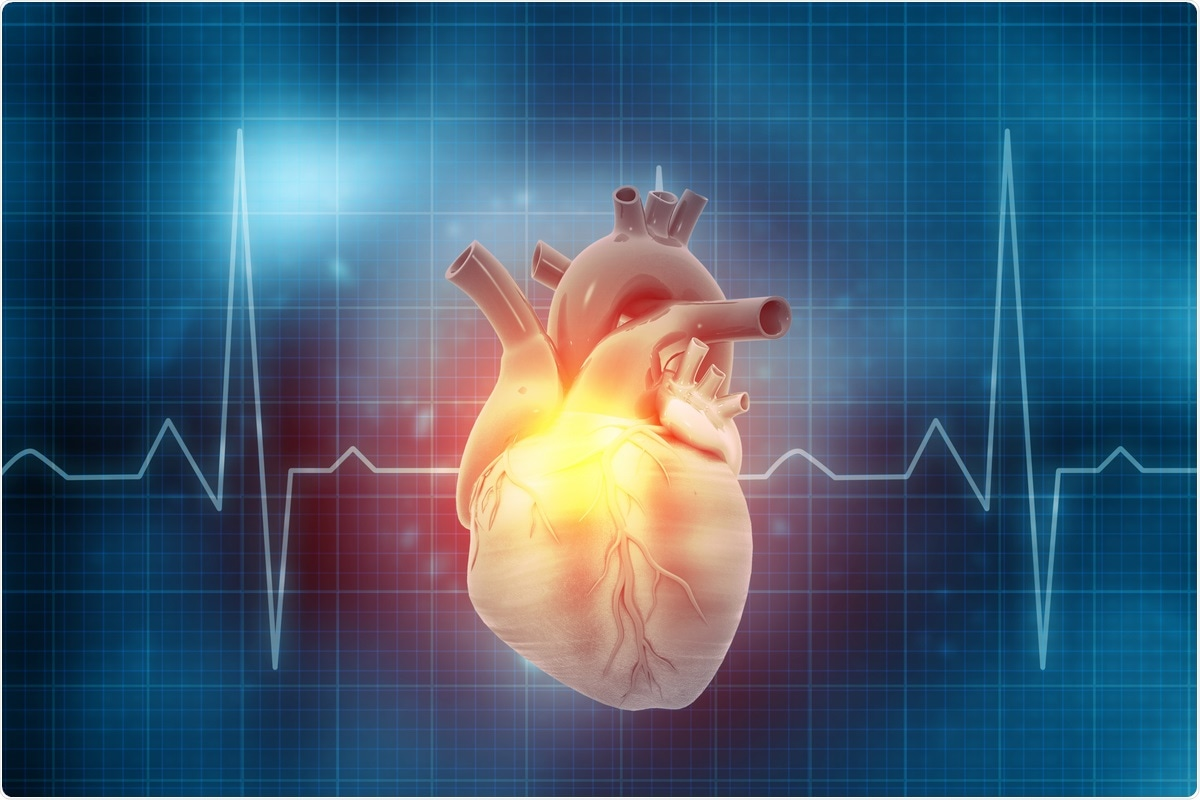 Study: Safe in my heart: resting heart rate variability longitudinally predicts emotion regulation, worry and sense of safeness during COVID-19 lockdown. Image Credit: Explode / Shutterstock
