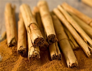 Cinnamon compound could be useful supplement to dexamethasone in COVID-19 treatment