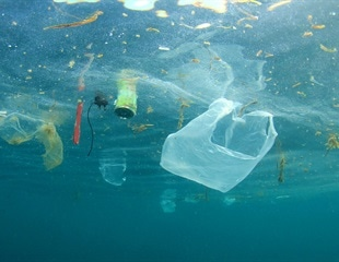 Marine plastic pollution among the top marine-related threats of public concern
