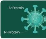 Novel Coronavirus (SARS-CoV-2) Reagents for Research