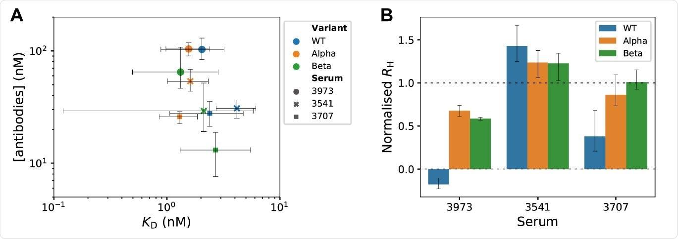 Perfil de afinidad de anticuerpos microfluídicos y ensayo de competencia de unión al receptor en solución en suero convaleciente de SARS-CoV-2.  (A) La unión de equilibrio se midió por tamaño de difusión de microfluidos para diversas concentraciones de variantes de RBD marcadas con fluorescencia y diluciones de sueros convalecientes.  Los valores de KD y las concentraciones de anticuerpos se determinaron a partir de modos de distribuciones de probabilidad posteriores obtenidas por inferencia bayesiana18,19.  Las barras de error son intervalos creíbles al 95%.  (B) El ensayo de competición de unión al receptor en solución identifica anticuerpos policlonales que desplazan el pico S1 del receptor ACE2.  En Rh normalizado = 0, todo S1 se desplazó de ACE2, y el Rh medido es el mismo que para ACE2 libre.  En Rh normalizado = 1, S1 no se desplazó de ACE2 y el Rh medido es el mismo que para el complejo ACE2 / S1.  Las barras de error son desviaciones estándar obtenidas de mediciones por triplicado.