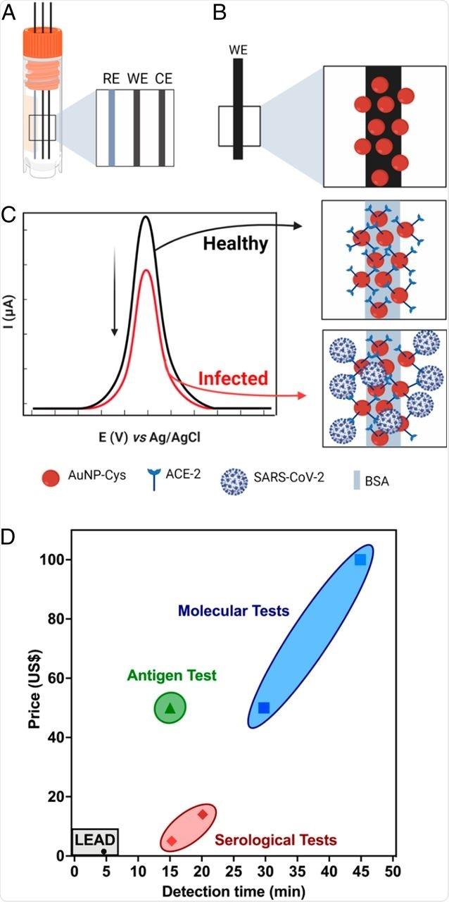 ABOUTISSEZ, un biocapteur électrochimique rapide et bon marché. (a) Représentation schématique des électrodes en graphite utilisées en FIL. (b) Functionalization d