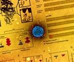 NIH scientists demonstrate efficient aerosol transmission of SARS-CoV-2 in hamsters