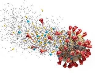 Molecular dynamic analysis of SARS-CoV-2 inhibitors