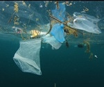 Ocean Pollution and Human Health