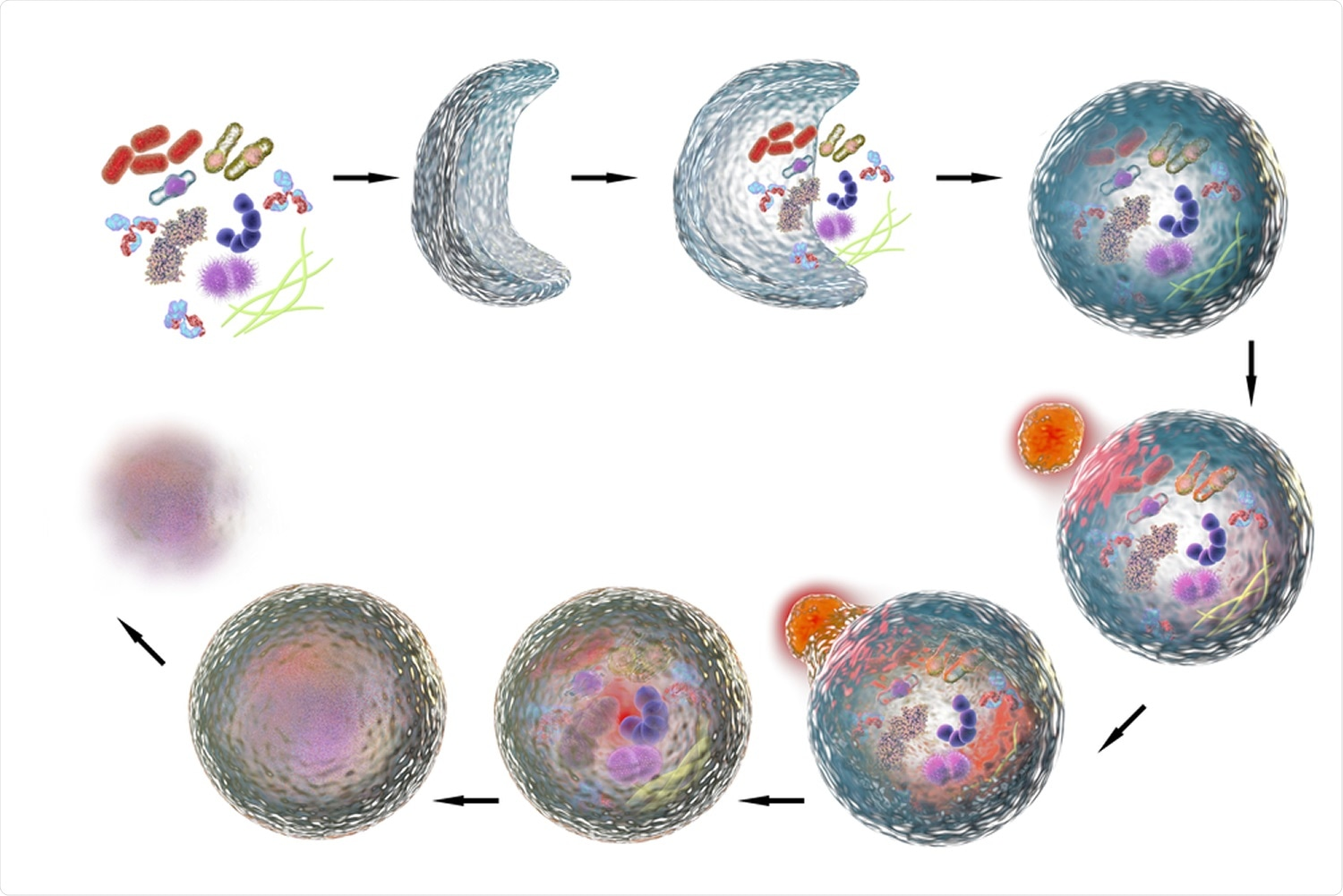Study: Manipulation of autophagy by SARS-CoV-2 proteins. Image Credit: Kateryna Kon / Shutterstock