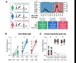 Prior SARS-CoV-2 infection enhances Johnson and Johnson Ad26.COV2.S vaccine immunogenicity