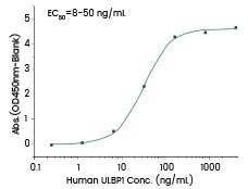 Human ULBP1 (Cat#: 10679-H03H).