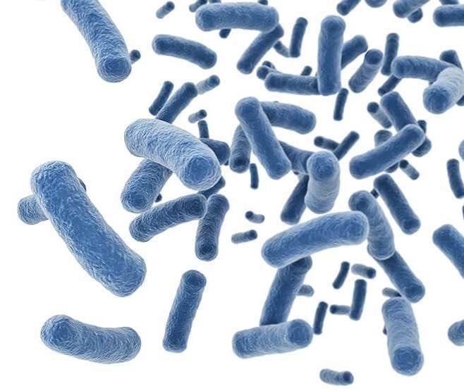 BioPlx sets out to control and combat the rise of antibiotic-resistant superbugs