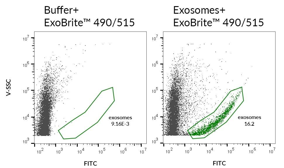 Biotium releases new ExoBrite EV Membrane Staining Kits