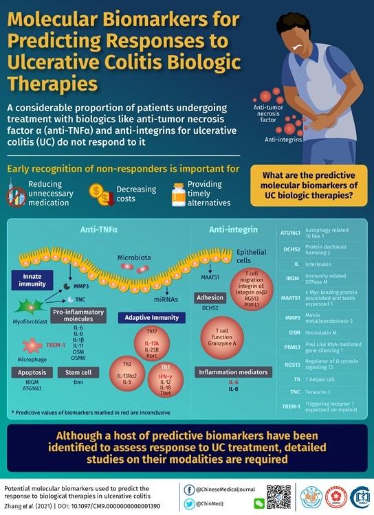 Facteurs prédictifs moléculaires potentiels diminuants de réaction aux traitements biologiques dans les colites ulcéreuses