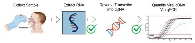 One SARS-CoV-2 workflow is a Real-Time RT-qPCR Assay. This figure is adapted from the CDC 2019-Novel Coronavirus (2019-nCoV) Real-Time RT-PCR Diagnostic Panel2. Note that the CDC guidelines do not mention nucleic acid quantification after RNA extraction or before qPCR amplification. The MIQE guidelines for minimum information for publication of quantitative real-time PCR experiments3 do define nucleic acid quantity and A260/A280 purity as useful information for qPCR publication.