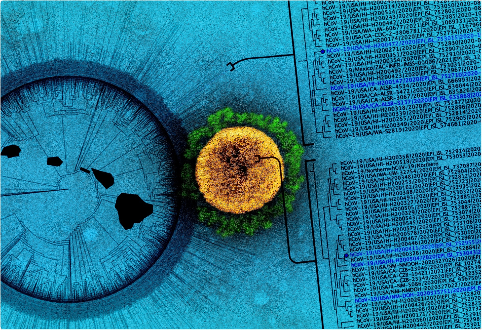 Study: Algorithm for the Quantitation of Variants of Concern for Rationally Designed Vaccines Based on the Isolation of SARS-CoV-2 Hawaiʻi Lineage B.1.243. Image Credit: NIAID