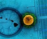 Study suggests algorithm may help optimize future COVID-19 vaccine design
