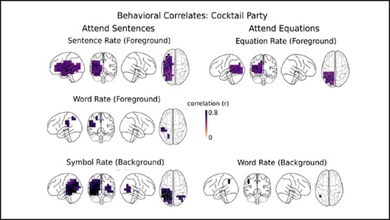 Math and language processed by separate networks in the brain, reveals research