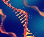 SARS-CoV-2 destabilizes host RNA to improve fitness